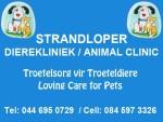 veterinary clinic in Hartenbos