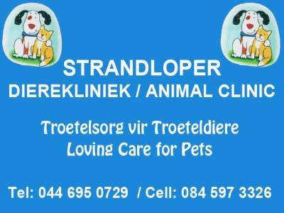 veterinary clinic in Hartenbos
