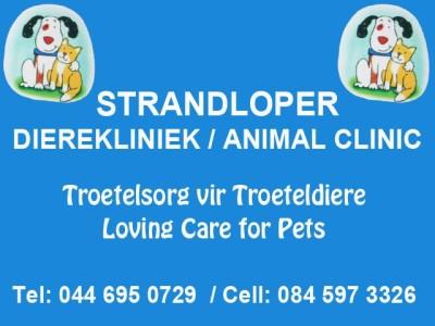 Strandloper Animal Clinic Hartenbos