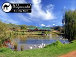 Accommodation at Wilgewandel Holiday Farm – Oudtshoorn