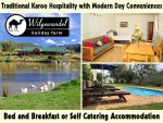 Oudtshoorn Accommodation at Wilgewandel