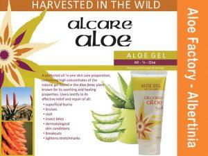 Aloe Gel from Alcare Aloe Albertinia