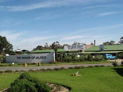 Aloe Factory in Albertinia South Africa