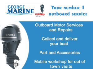 Outboard Services in George