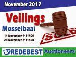 November 2017 Veilings in Mosselbaai