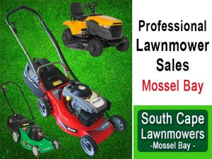 Quality Lawnmowers For Sale in Mossel Bay