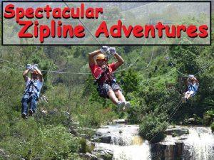 Spectacular Zipline Adventures in Tsitsikamma