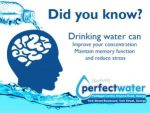 Drinking Water to Improve Your Concentration and Reduce Stress