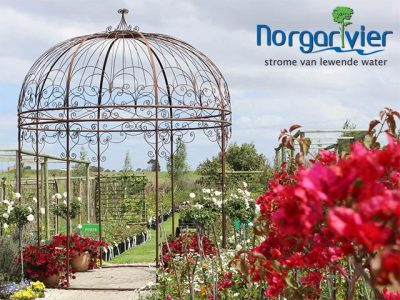 Nursery with the Biggest Variety Plants in George
