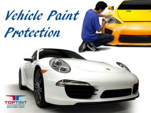 Vehicle Paint Protection in George