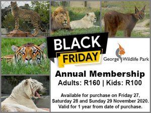 George Wildlife Park Black Friday 2020
