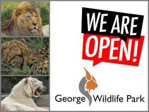 Outdoor Family Friendly Experience in George