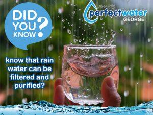Purifying Rain Water in the Garden Route