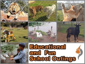 Fun and Educational School Outings in George
