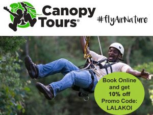 Get Discount on Your Tsitsikamma Canopy Tour