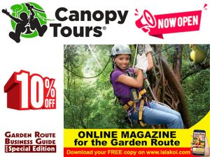 Fantastic Outdoor Adventure at Tsitsikamma Canopy Tour