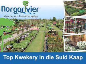 Top Kwekery in die Suid Kaap